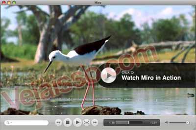 assistir-TV-PC-gratis-TV-online-Vivo-televisao-canal-futebol-cabo-gratis