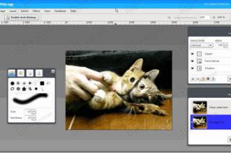 Aviary - Melhor e mais completo editor de fotos online, Photoshop Online