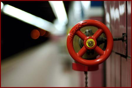 Foto bem enquadrada através da regra dos 3 e do uso do foco da câmera somente no objeto de interesse