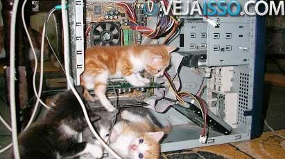 Envelhecimento do computador e falta de manutenção do sistema são as principais causas de perda de performance de um computador e notebook